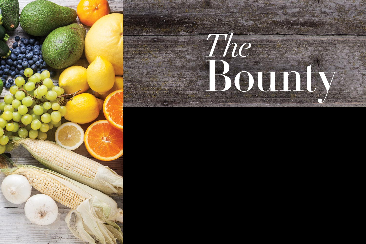 the-bounty-video-header