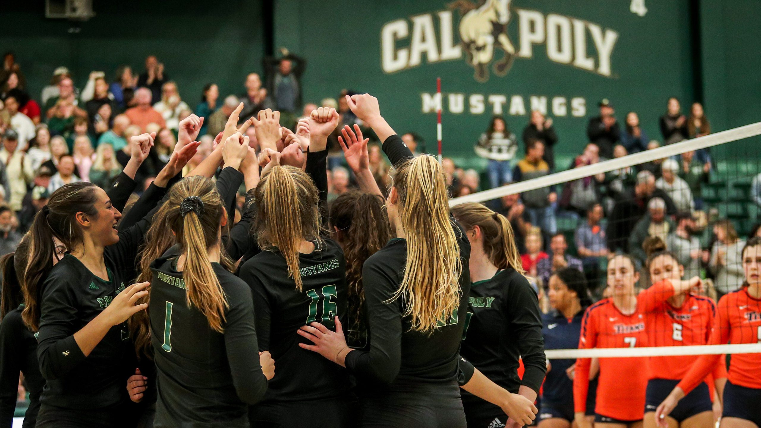 Cal Poly volleyball players celebrating a win in Mott Gym