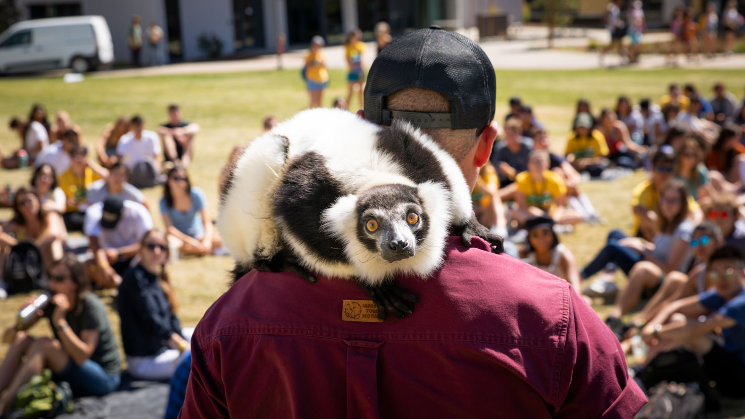 A lemur looks over the shoulder of its handler at a Cal Poly WOW event.