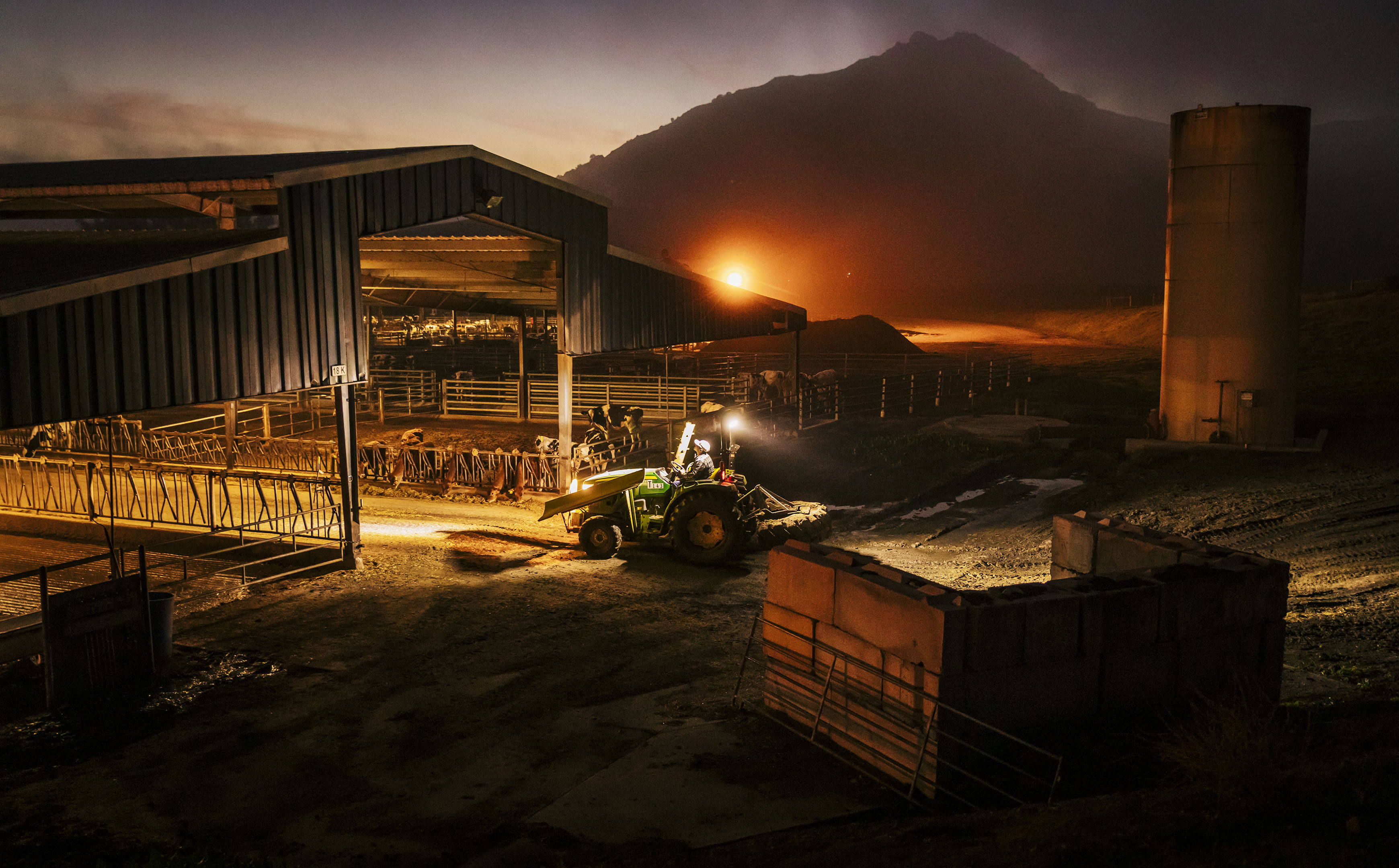 A tractor drives into a covered cattle pen before dawn as fog rolls in near Bishop Peak
