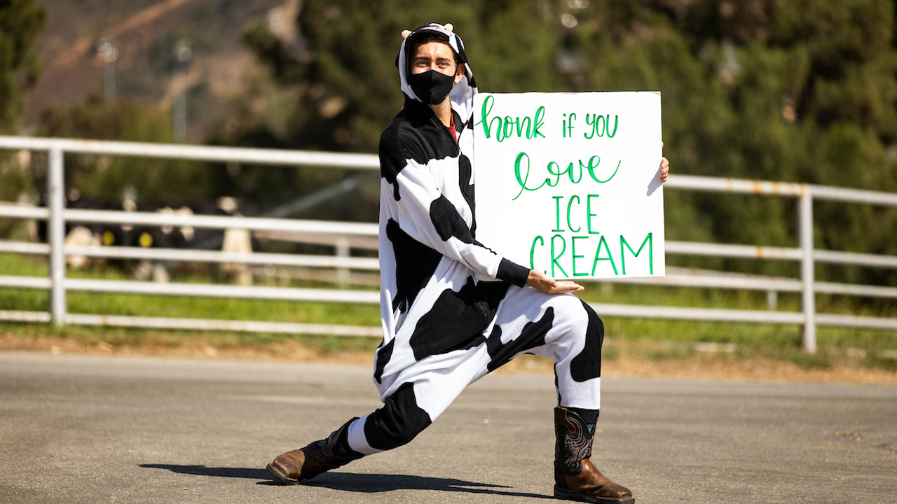 A student wearing a cow costume holds a sign that says 'honk if you love ice cream'