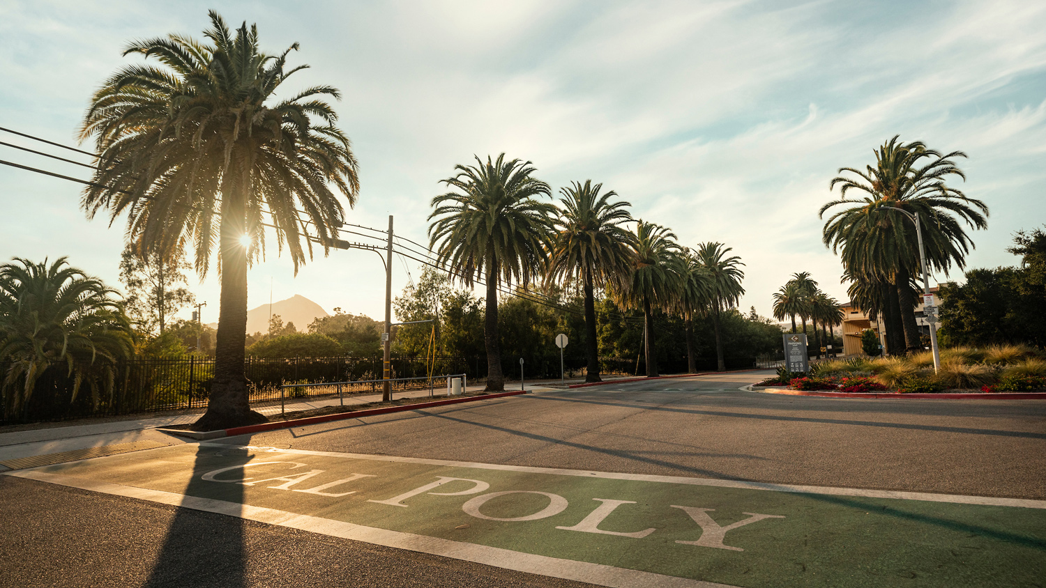 A campus intersection at sunset with the words Cal Poly painted in the crosswalks