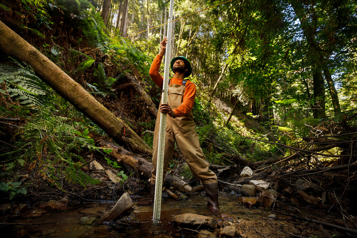 A young man in waders and a hardhat takes a measurement of the water level in a forest stream using a long ruler and a line suspended over the water
